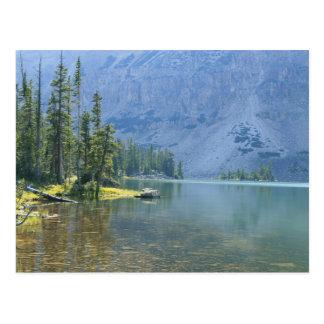 USA, Utah, Ashley National Forest, High Uintas Postcard