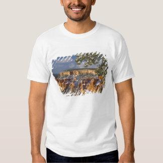 USA, Utah, Bryce Canyon National Park. Sunrise Shirt