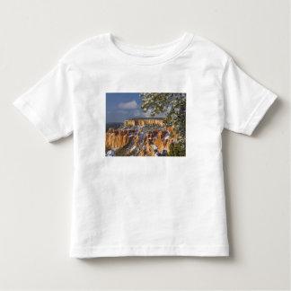 USA, Utah, Bryce Canyon National Park. Sunrise T Shirt