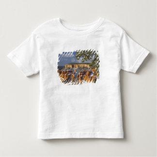 USA, Utah, Bryce Canyon National Park. Sunrise Tee Shirt