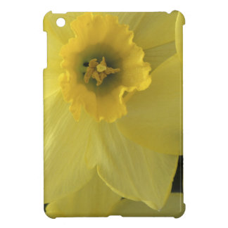 USA, Utah, Cache Valley Daffodils Case For The iPad Mini