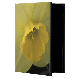 USA, Utah, Cache Valley Daffodils Cover For iPad Air