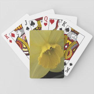 USA, Utah, Cache Valley Daffodils Card Deck