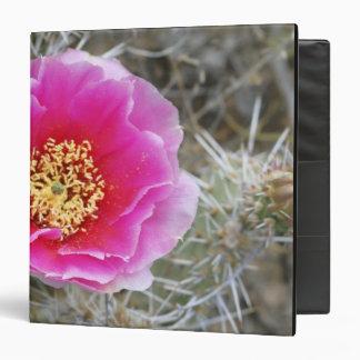 USA, Utah, Canyonlands NP, Desert Prickly Pear 3 Ring Binder