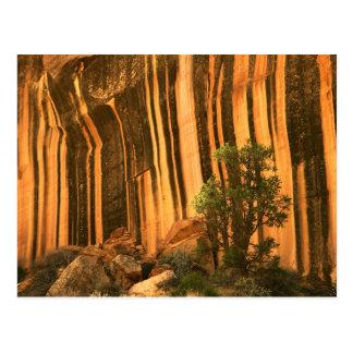 USA, Utah, Capitol Reef National Park Postcard