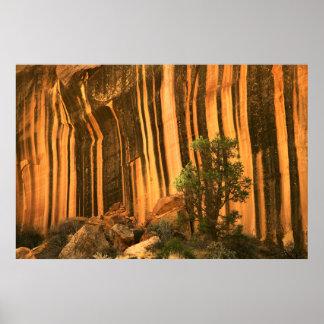USA, Utah, Capitol Reef National Park Poster