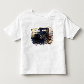 USA, Utah, Capitol Reef National Park, Scenic Toddler T-shirt