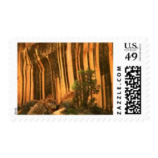 USA, Utah, Capitol Reef National Park Stamp