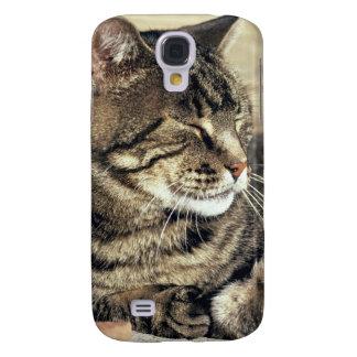 USA, Utah, Capitol Reef NP. Sleeping tabby cat Samsung Galaxy S4 Cover