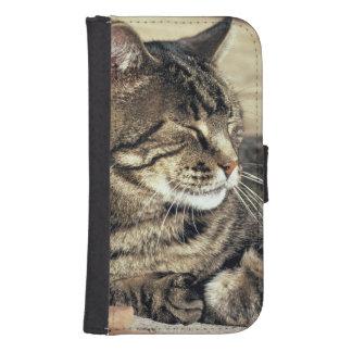 USA, Utah, Capitol Reef NP. Sleeping tabby cat Samsung S4 Wallet Case
