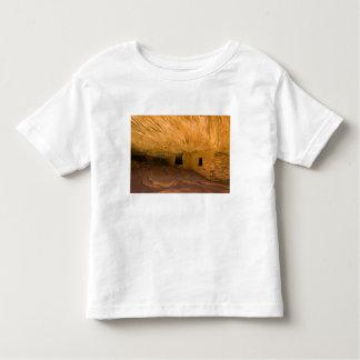 USA, Utah, Cedar Mesa, Mule Canyon. Sandstone Toddler T-shirt