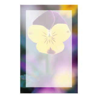 USA, Utah, Close-Up of Viola tricolor in garden Stationery