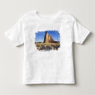 USA, Utah, Colorado Plateau, Lower Cathedral Toddler T-shirt