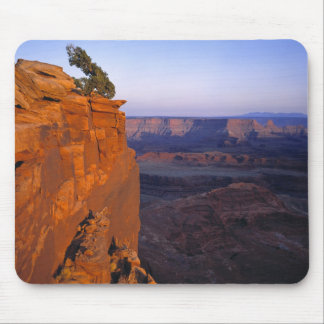 USA, Utah, Dead Horse Point SP. Late light turns Mouse Pad