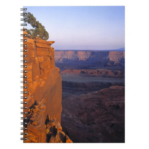 USA, Utah, Dead Horse Point SP. Late light turns Spiral Notebooks