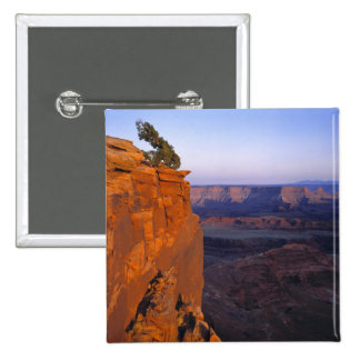 USA, Utah, Dead Horse Point SP. Late light turns Pinback Button