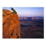 USA, Utah, Dead Horse Point SP. Late light turns Post Card