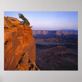 USA, Utah, Dead Horse Point SP. Late light turns Poster