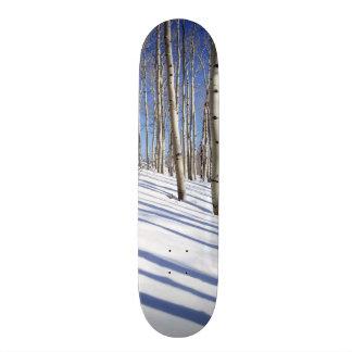 USA, Utah, Dixie National Forest, Aspen Grove Skateboard