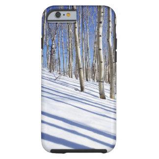 USA, Utah, Dixie National Forest, Aspen Grove Tough iPhone 6 Case
