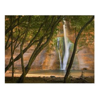 USA, Utah, Escalante Wilderness. A view of Postcard