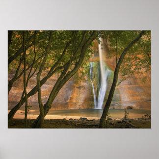 USA, Utah, Escalante Wilderness. A view of Poster