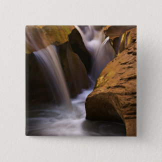 USA, Utah, Escalante Wilderness. Waterfall in 2 Pinback Button