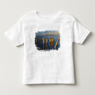 USA, Utah, Great Basin, Saltair, Great Salt Toddler T-shirt