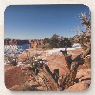 USA, Utah, Moab. Canyonlands National Park, Coaster