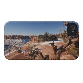 USA, Utah, Moab. Canyonlands National Park, iPhone 4 Case-Mate Case