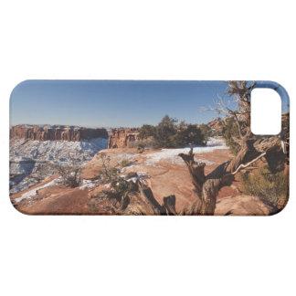 USA, Utah, Moab. Canyonlands National Park, iPhone SE/5/5s Case