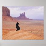 USA, Utah, Monument Valley, Dog sitting on rock Poster