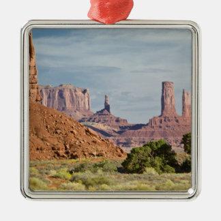 USA, Utah, Monument Valley Navajo Tribal Park. Ornament