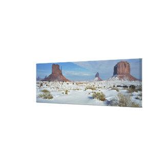 USA, Utah, Monument Valley. Sagebrush shows Gallery Wrap Canvas