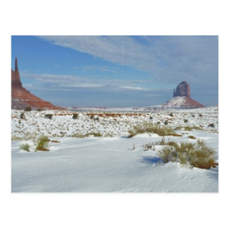 USA, Utah, Monument Valley. Sagebrush shows Postcard