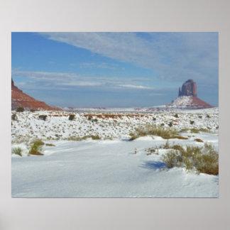USA, Utah, Monument Valley. Sagebrush shows Posters