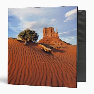 USA, Utah, Monument Valley. Wind creates Binder