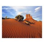 USA, Utah, Monument Valley. Wind creates Photo Print