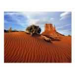 USA, Utah, Monument Valley. Wind creates Postcard