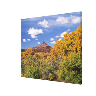 USA Utah near Canyonlands National Park on Stretched Canvas Prints