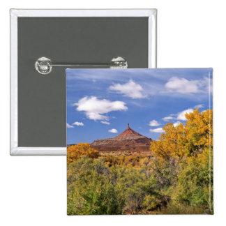 USA, Utah, near Canyonlands National Park on Pinback Button