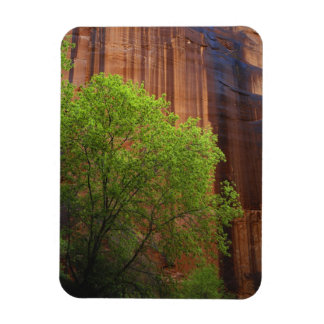 USA, Utah, Paria Canyon- Vermillion Cliffs Magnet