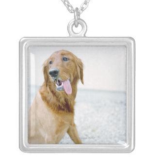 USA, Utah, Salt Lake City, Half shaved Golden Silver Plated Necklace