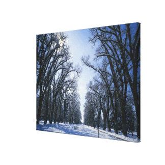 USA, Utah, Salt Lake City, Liberty Park, Canvas Print