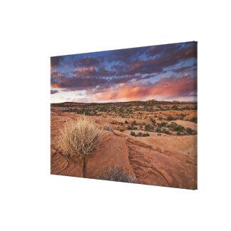 USA, Utah. Sunset on Poison Spider Mesa near Canvas Print