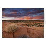 USA, Utah. Sunset on Poison Spider Mesa near Cards