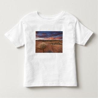 USA, Utah. Sunset on Poison Spider Mesa near Toddler T-shirt