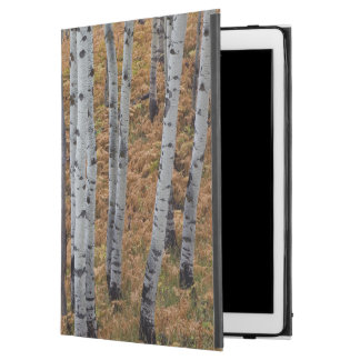 """USA, Utah, Uinta-Wasatch-Cache National Forest 2 iPad Pro 12.9"""" Case"""