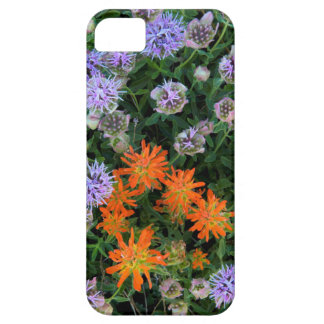 USA, Utah, Uinta-Wasatch-Cache National Forest 3 iPhone SE/5/5s Case