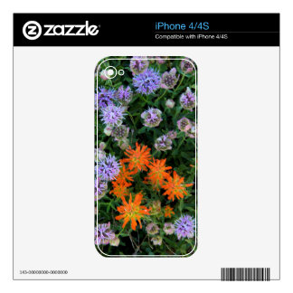 USA, Utah, Uinta-Wasatch-Cache National Forest 3 Skins For The iPhone 4S